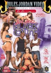 Lisa Anns Black Out XXX DVDRip x264 – CHiKANi