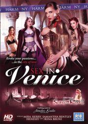 Sex in Venice (2013) DVDRip x264-CHiKANi