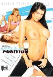 Assume The Position 2013 XXX DVDRip x264-CiCXXX