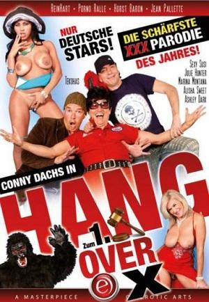 Hang Over X German XXX DVDRip x264 REPACK - CHiKANi