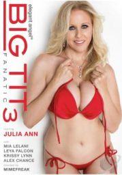 Big Tits Fanatic 3 XXX DVDRip x264 – CiCXXX