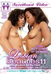 Lesbian Beauties 11 XXX DVDRiP x264 – DivXfacTory