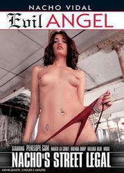 Nachos Street Legal XXX DVDRip x264 – CiCXXX